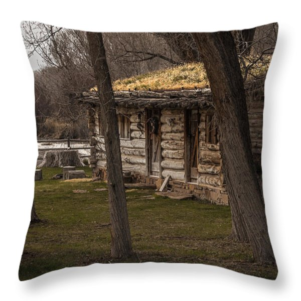 Log Cabin By The River Throw Pillow by David Kehrli