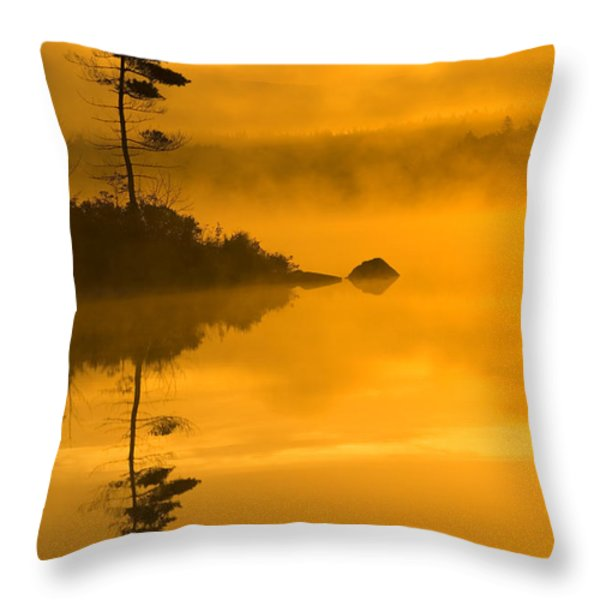 Lone Pine And Misty Lake At Dawn Throw Pillow by Irwin Barrett
