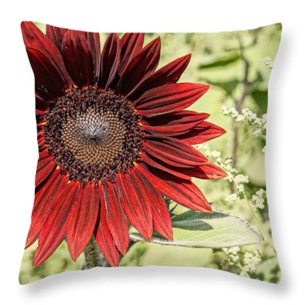 Lone Red Sunflower Throw Pillow by Kerri Mortenson