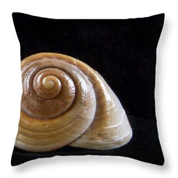 Lone Shell Throw Pillow by Jean Noren
