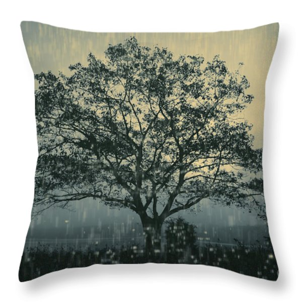 Lone Tree and Stormy Evening Throw Pillow by David Gordon