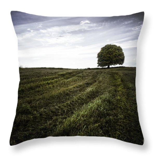 Lone tree  Throw Pillow by John Farnan