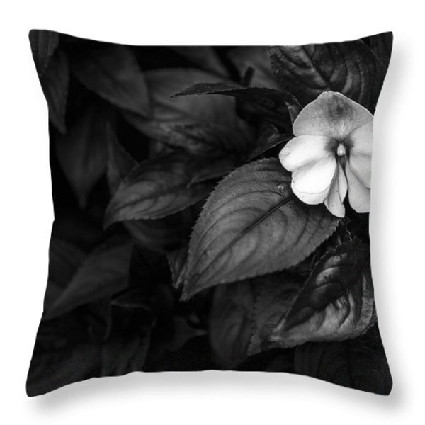 Lonely 1 Throw Pillow by Jon Glaser