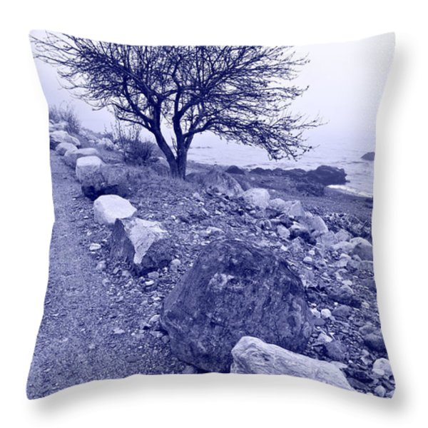 Lonely Road 2 Throw Pillow by Bill Caldwell -        ABeautifulSky Photography