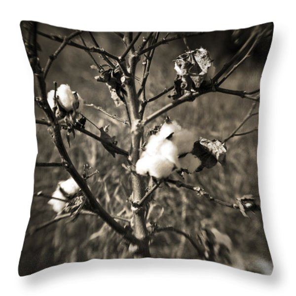 Lonesome Throw Pillow by Scott Pellegrin