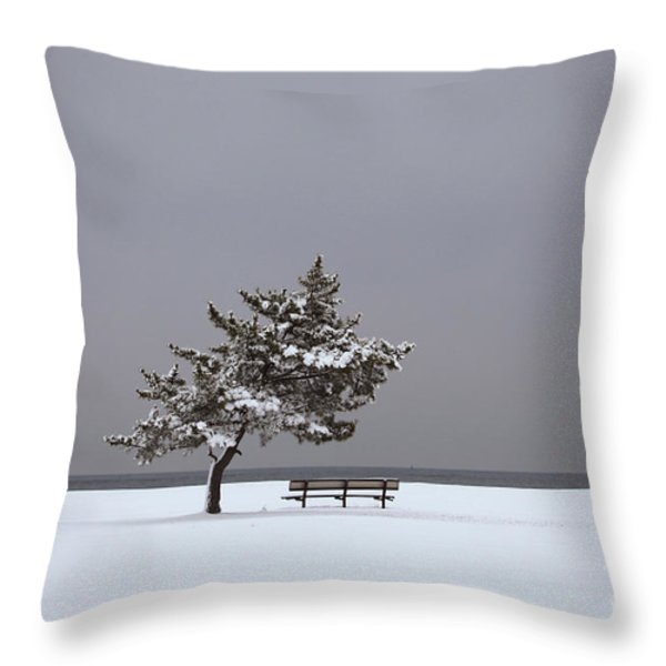 Lonesome Winter Throw Pillow by Karol Livote