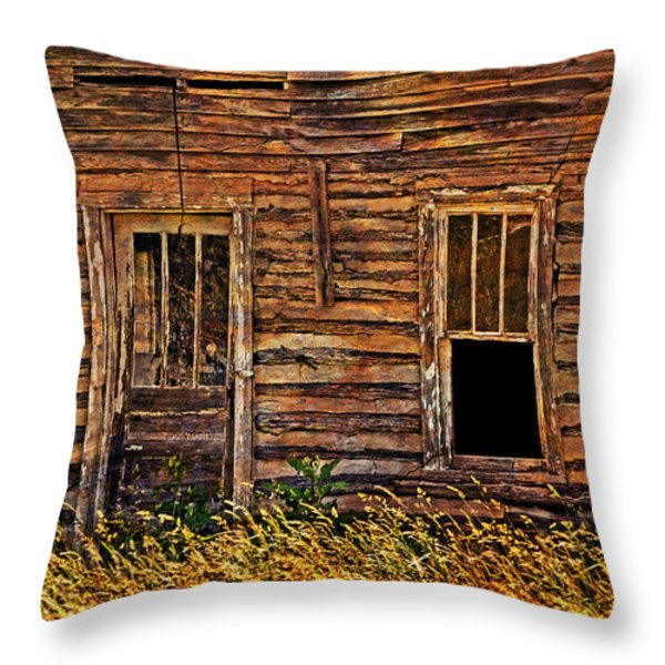 Long Abandonded 2 Throw Pillow by Marty Koch