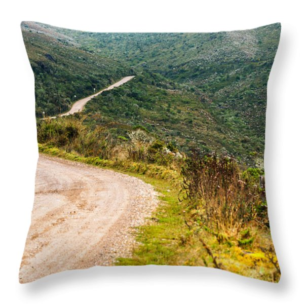 Long Country Road Throw Pillow by Jess Kraft