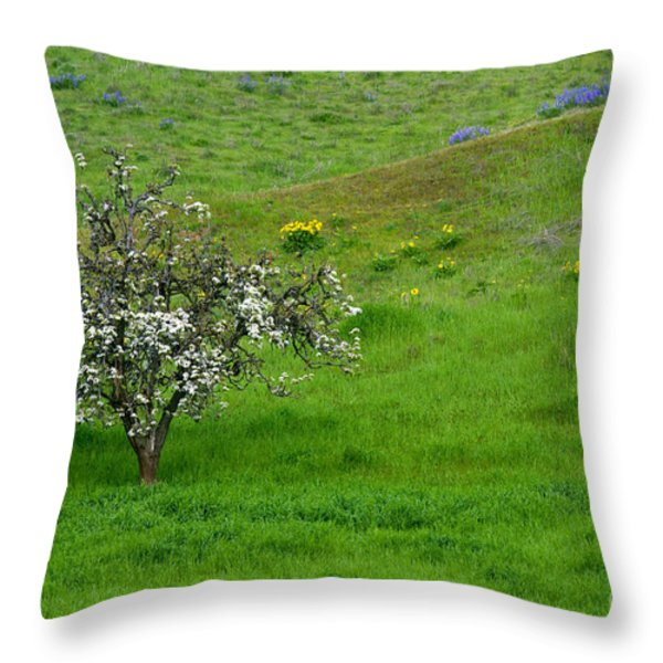 Long Forgotten Throw Pillow by Mike  Dawson