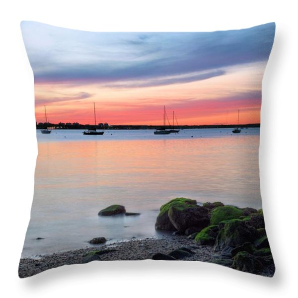 Long Island Throw Pillow by JC Findley