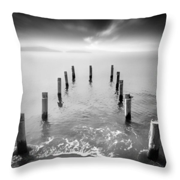 Long Silence Throw Pillow by Taylan Soyturk