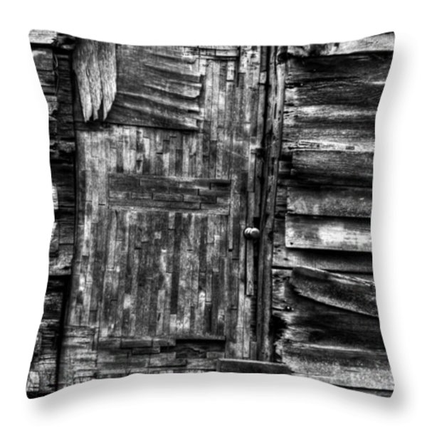 Long Time My Friend Throw Pillow by Thomas Young