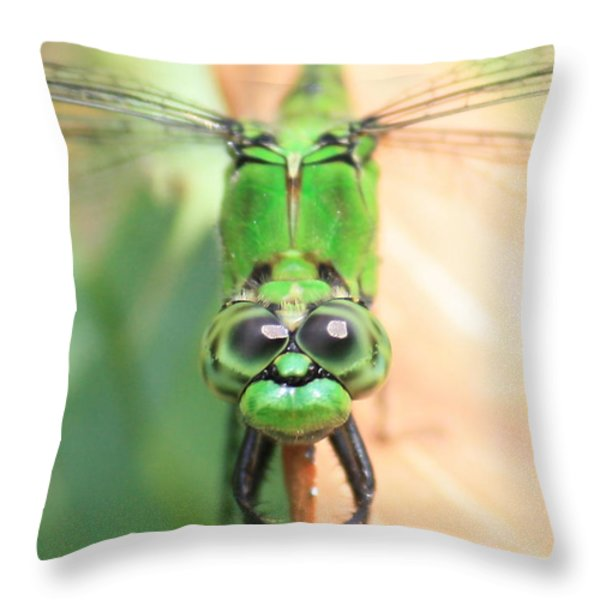 Long Time No See Throw Pillow by Carol Groenen