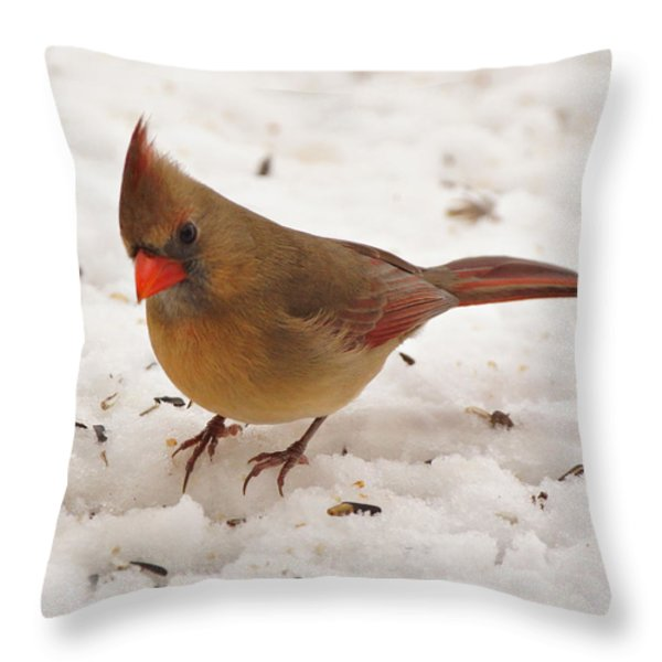 Look at You Throw Pillow by Sandy Keeton