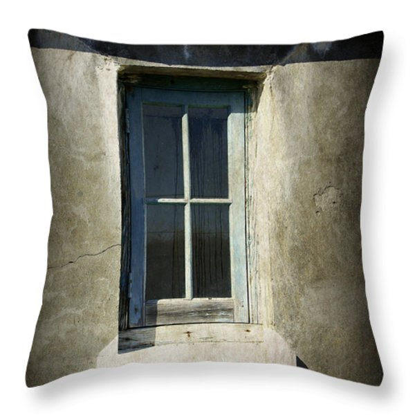 Looking Inwards Throw Pillow by Marilyn Wilson