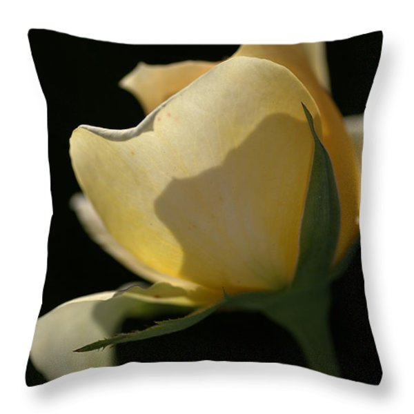 Looking Through Throw Pillow by Joy Watson