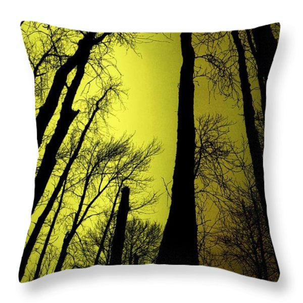 Looking Through The Naked Trees  Throw Pillow by Jeff Swan