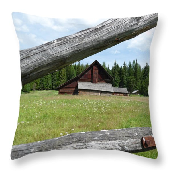 Looking Thru the Fence Throw Pillow by Alan Socolik
