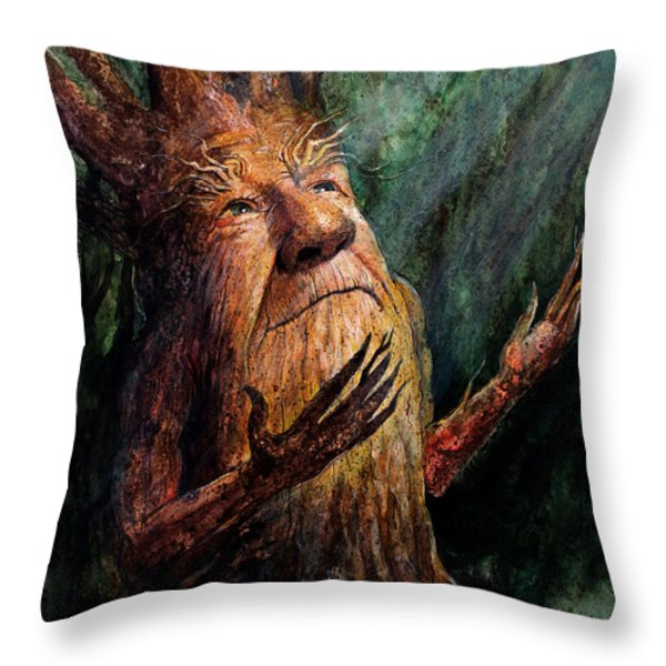 Looking To the Light Throw Pillow by Frank Robert Dixon