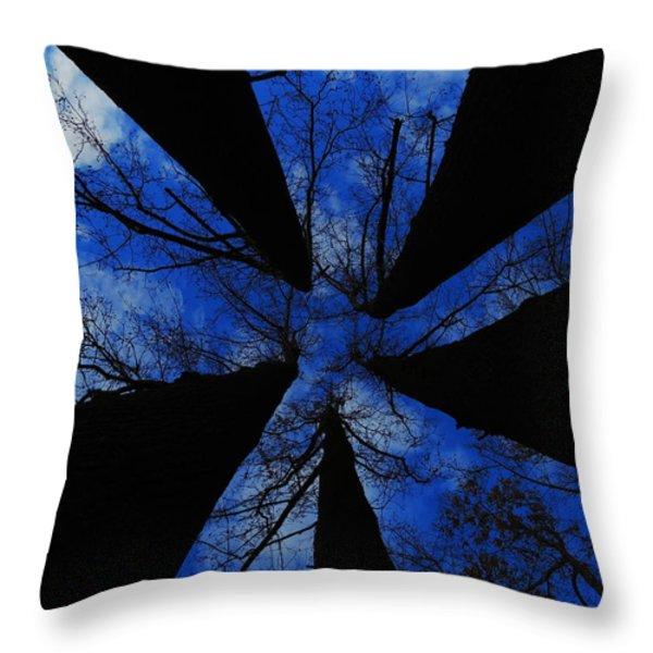 Looking Up Throw Pillow by Raymond Salani III