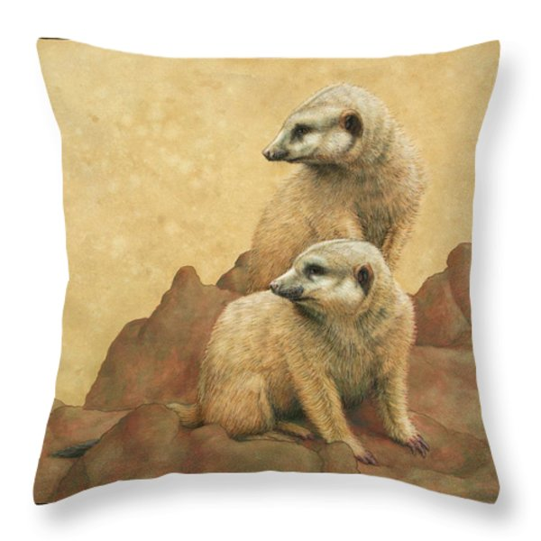 Lookouts Throw Pillow by James W Johnson