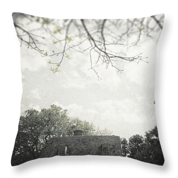 Looming Throw Pillow by Margie Hurwich