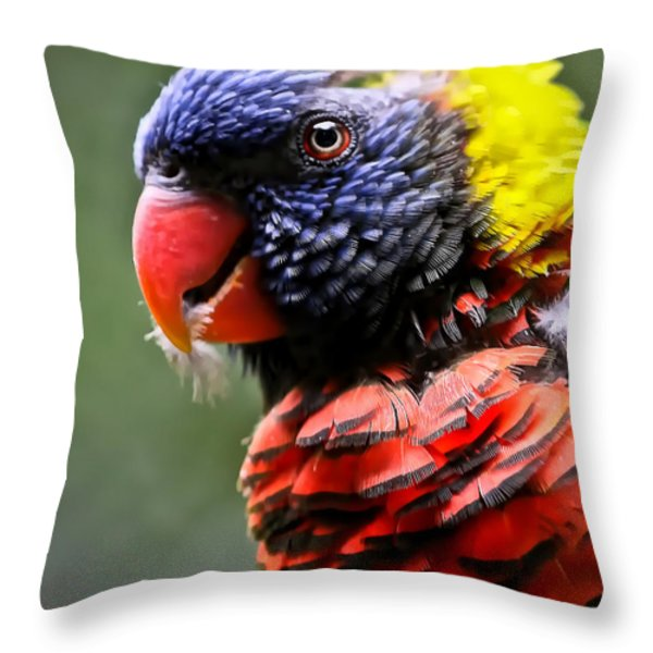 Lorikeet Bird Throw Pillow by Athena Mckinzie