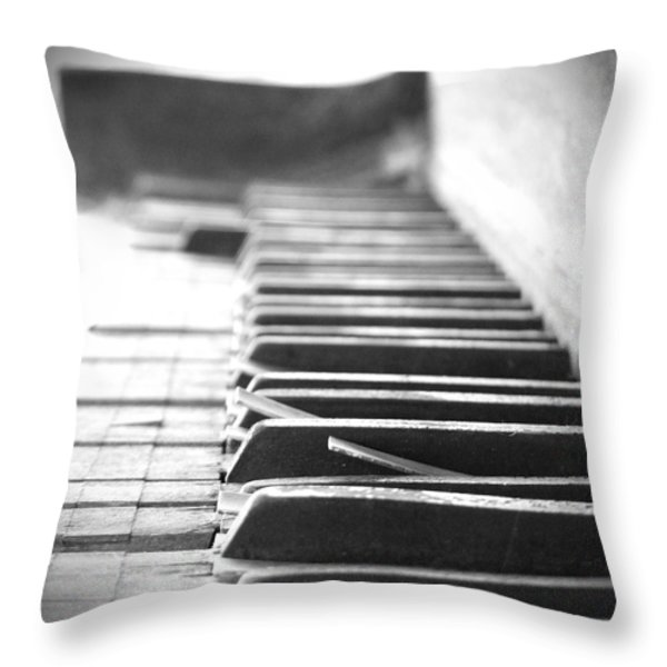 Lost My Keys Throw Pillow by Mike McGlothlen