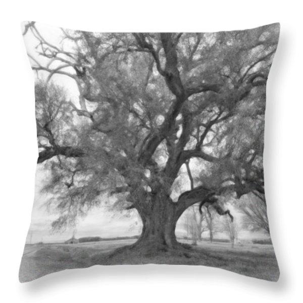 Louisiana Dreamin' monochrome Throw Pillow by Steve Harrington