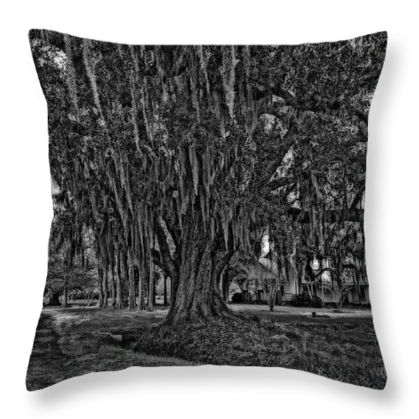 Louisiana Moon Rising Monochrome 2 Throw Pillow by Steve Harrington