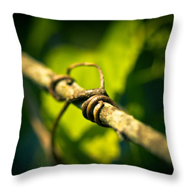 love takes hold Throw Pillow by Shane Holsclaw