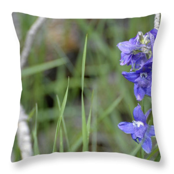Low Larkspur In Yellowstone National Park Throw Pillow by Bruce Gourley