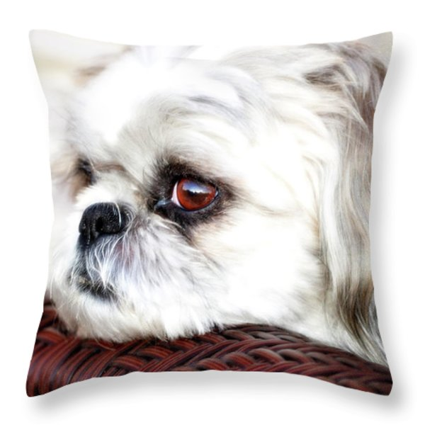 Lucy Throw Pillow by Molly McPherson