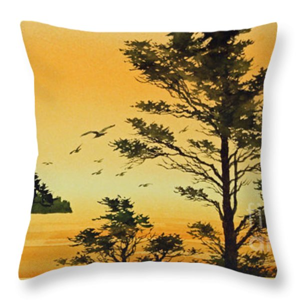 Luminous Sunset Throw Pillow by James Williamson