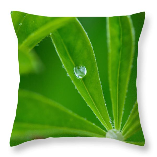 Lupine Dreams Throw Pillow by Lisa Knechtel