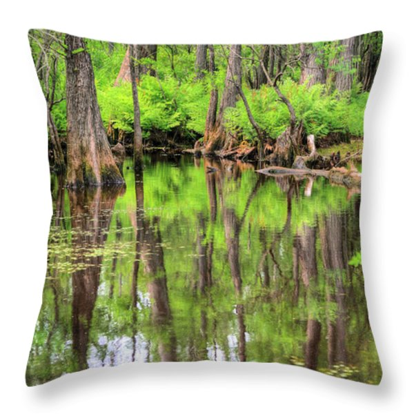 Lush Throw Pillow by JC Findley