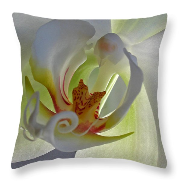 Macro Photograph Of An Orchid Throw Pillow by Juergen Roth