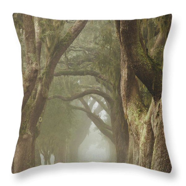 Magic Forest Throw Pillow by Barbara Marie Kraus