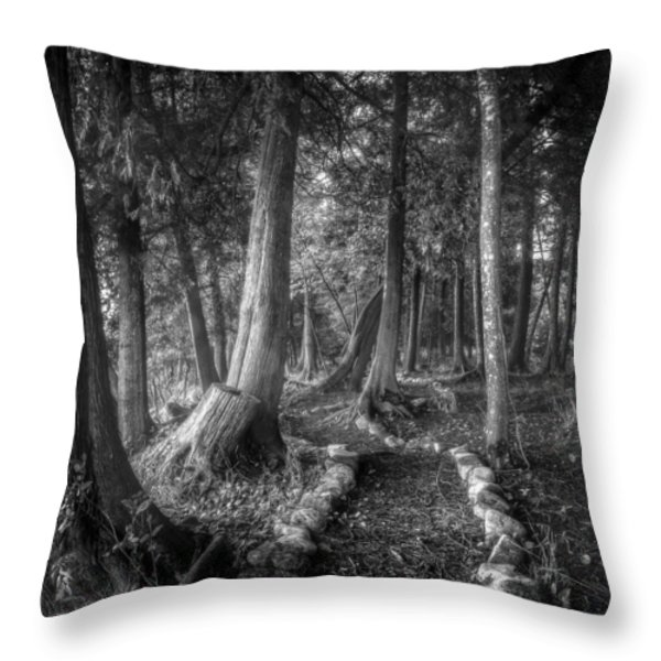 Magical Forest 2 Throw Pillow by Scott Norris