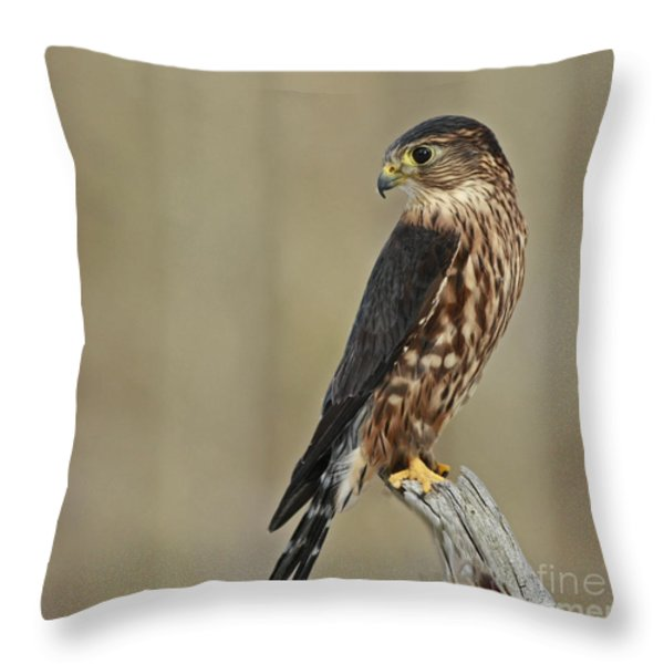 Magical Moments With Merlin Throw Pillow by Inspired Nature Photography Fine Art Photography