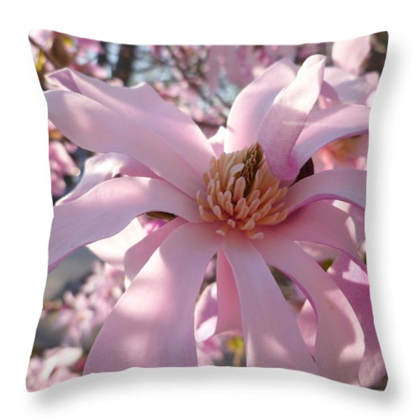 Magnificent Pink Infusion Throw Pillow by Lingfai Leung