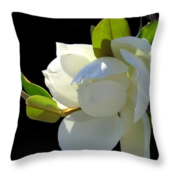 Magnolia Blossom Throw Pillow by Ginny Schmidt