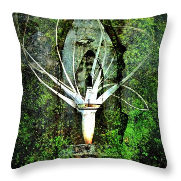 Maia Throw Pillow by Skip Hunt