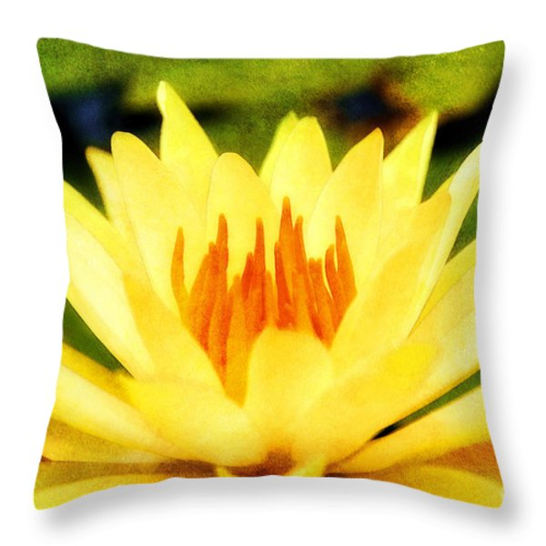 Majestic Throw Pillow by Darren Fisher