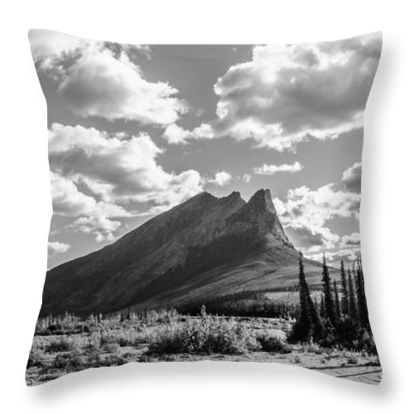 Majestic Drive Throw Pillow by Chad Dutson