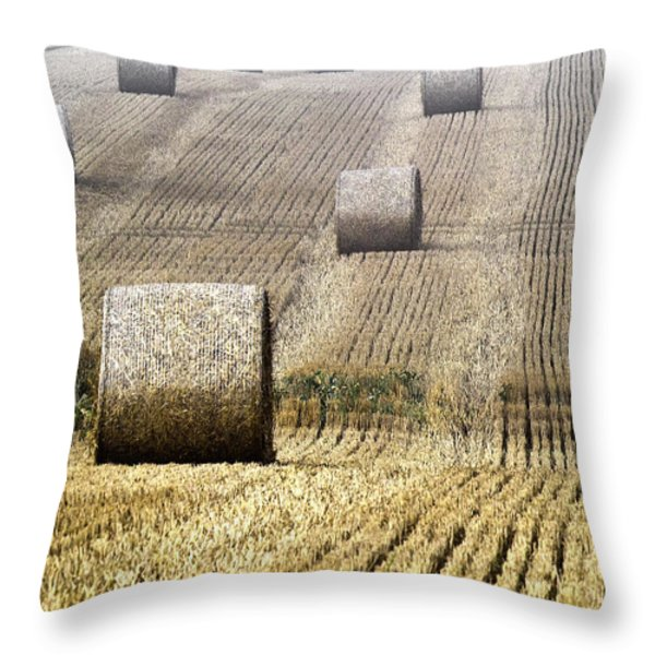 Make Hay While The Sun Shines  Throw Pillow by Heiko Koehrer-Wagner