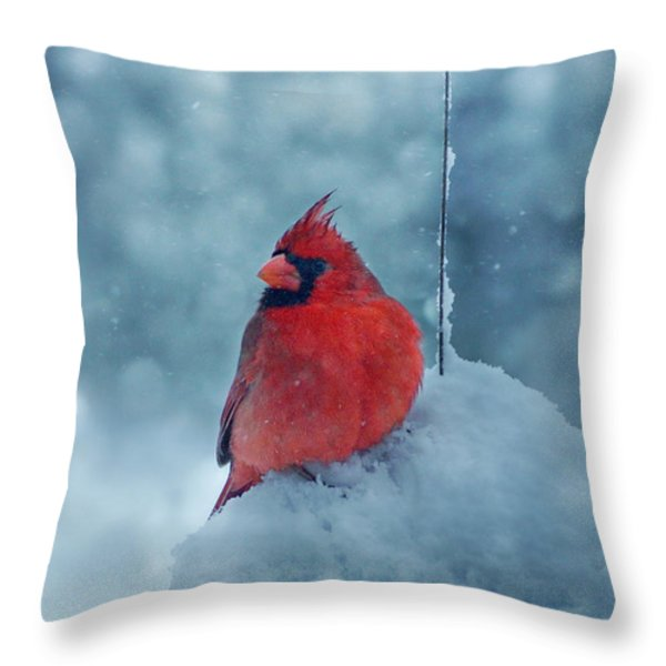 Male Cardinal In The Snow Throw Pillow by Sandy Keeton