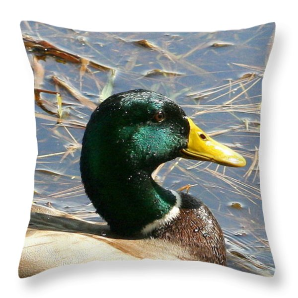 Mallard Duck Portrait Throw Pillow by Neal  Eslinger