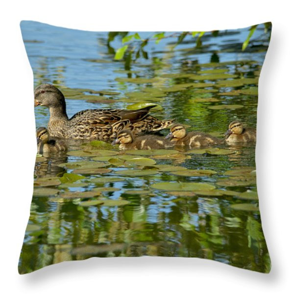 Mallard Mom And The Kids Throw Pillow by Sharon  Talson