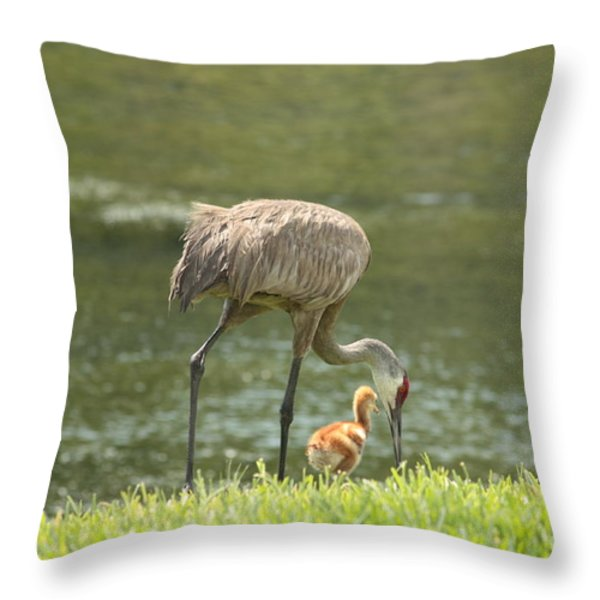 Mama and Chick Throw Pillow by Carol Groenen